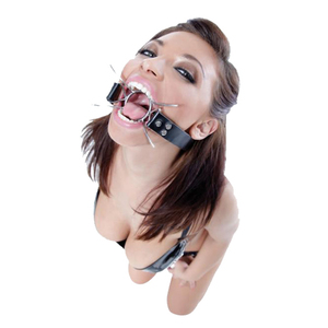 Fetish Fantasy Extreme Spider Gag for sale
